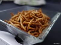 Rentokil Pestaurant - Mealworms... crunchy. Like cornflakes