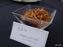 Rentokil Pestaurant - Mealworms... lots of crunch, no gooey creamy center