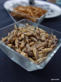 Rentokil Pestaurant - Salt & Vinegar Crickets