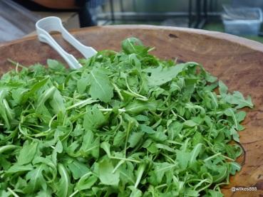 Rentokil Pestaurant - Salad, for pigeon burgers