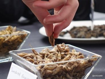 Rentokil Pestaurant - Finger Food Sundried Emperor Moth Caterpillars
