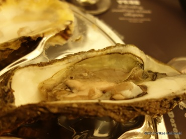Pearl Dram - Dorset Rock Oyster