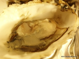 Pearl Dram - Lovely fresh oysters