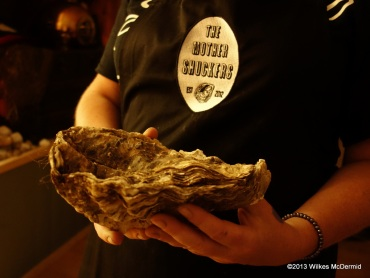 Pearl Dram - Huge oyster 'Cher' will be available to view until Sunday