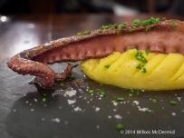Octopus served on mash - Pulpo (Octopus, olive oil mash,paprika)