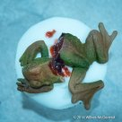 """""""Frogs Legs (and head)"""" Cupcakes"""